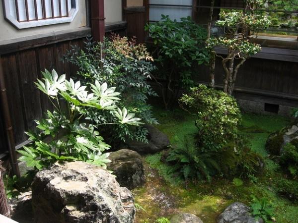 Сад цубо