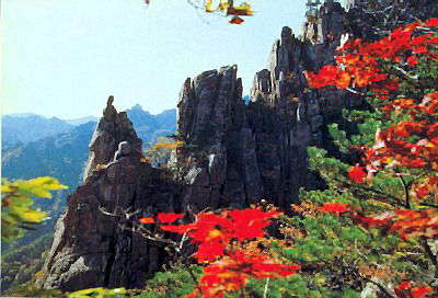 Истоки японского эстетизма. Культ природы