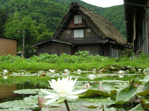 Гассё-дзукури: традиционный японский сельский дом